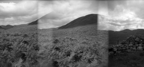 Scotland Summer 2011. Holga 120 /06