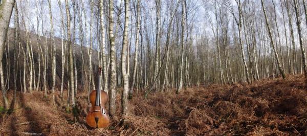 Suite pour violoncelle seul...