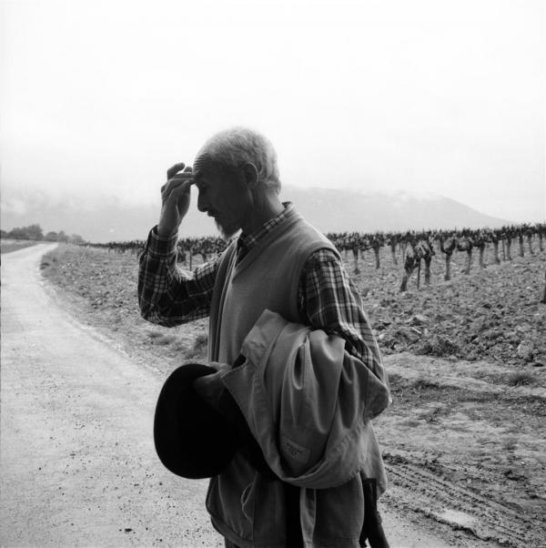 Le poètes dans les vignes... Nyons.