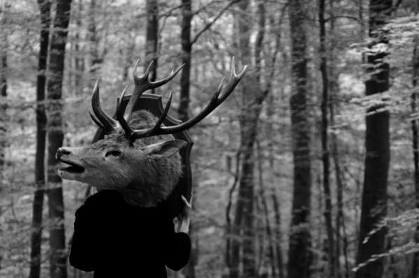 Création Peau de Bête en forêt d'Arcques la Bataille...2